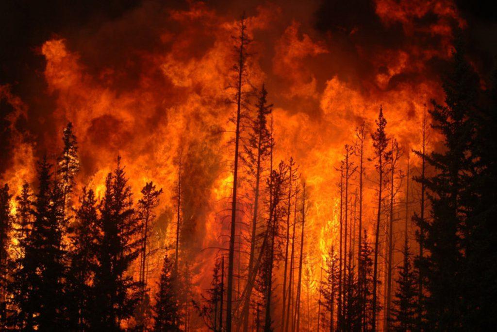 Monitoraggio-incendi-boschivi