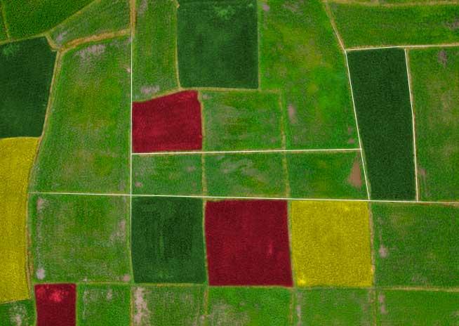 agricoltura_top_view-precisione-con-drone